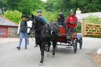A horse pulls a carriage with two people
